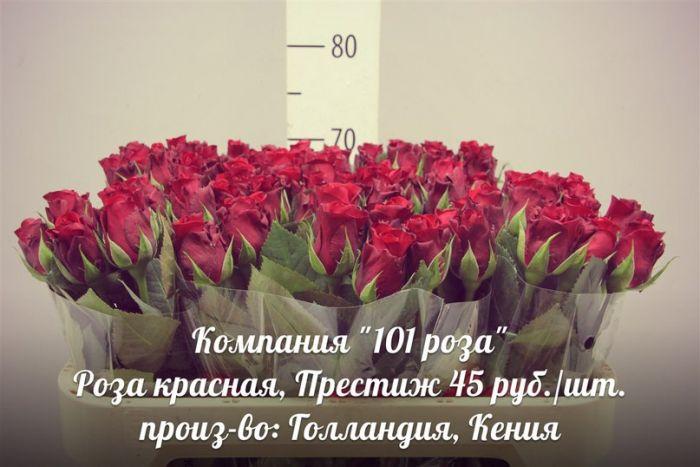 Сделать, где купить дешевле цветы в казани